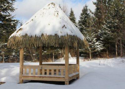 resiste-aux-hivers-canadiens